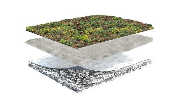 Groendakpakket Lichtgewicht • Gras en Groen Winkel