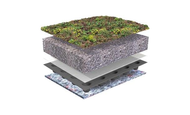 Sempergreen Groendakpakket Plat • Gras en Groen Graszoden
