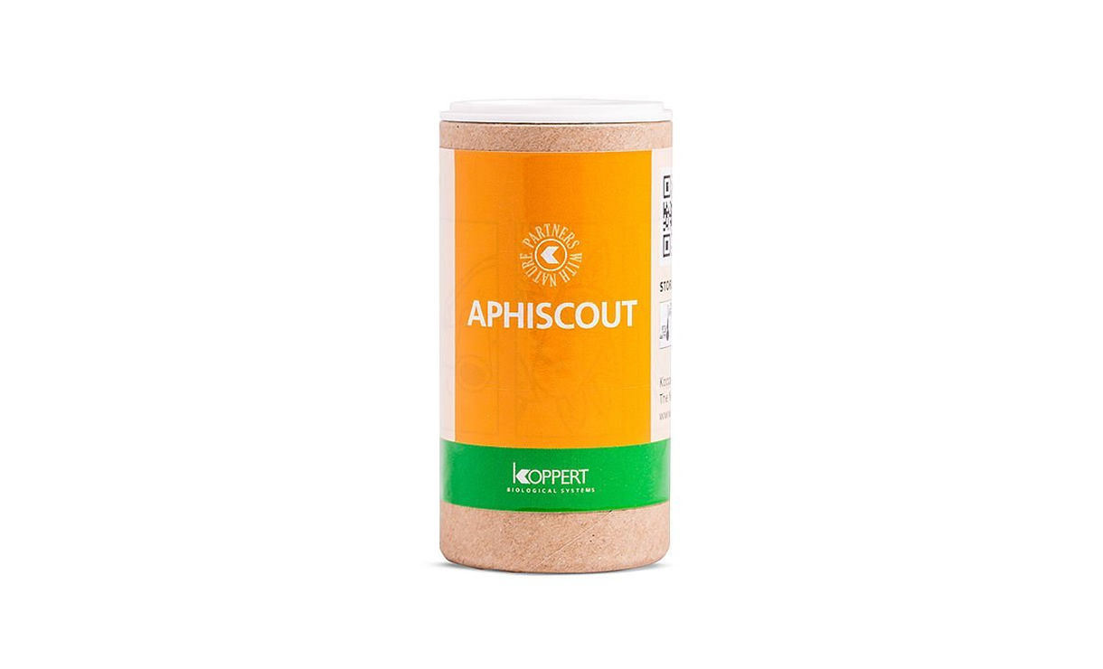 Aphiscout Sluipwespen • Gras en Groen Winkel