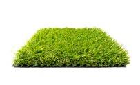 Kunstgras Quebec Deluxe 2.0 • Gras en Groen Kunstgras