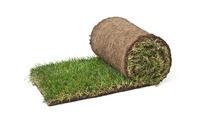 Premium graszoden • Gras en Groen Graszoden