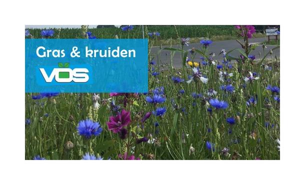 Gras en Kruidenmengsel 1 kg • Gras en Groen Winkel